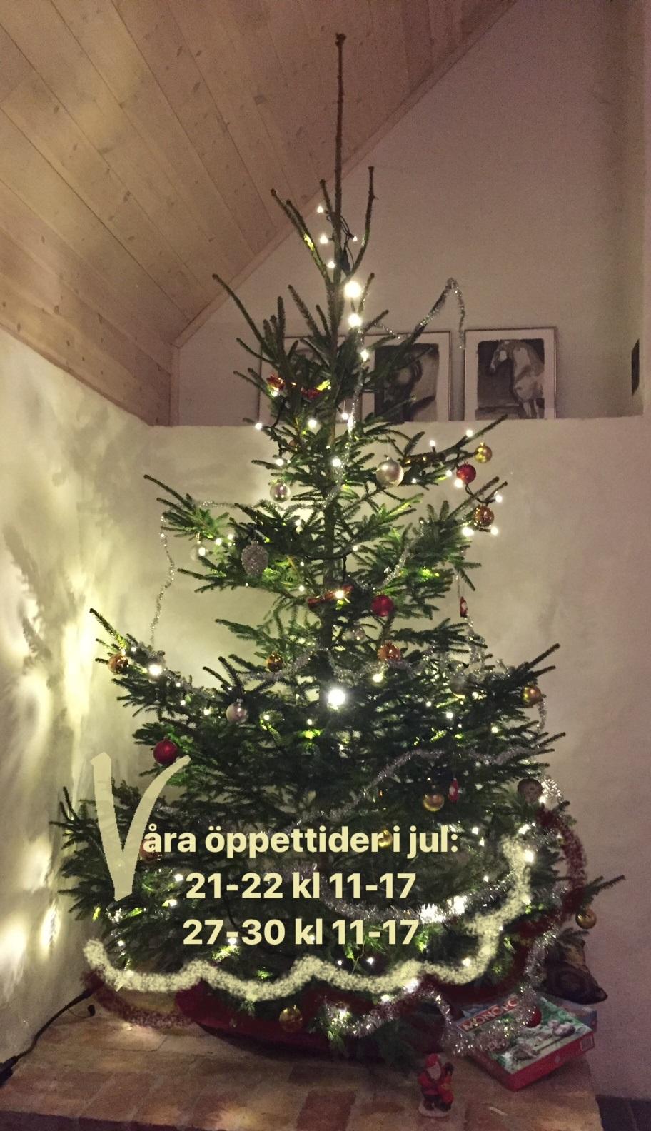 Till Er Alla, Från Oss Alla, En Fröjdefull God Jul!