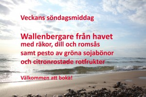 IMG_8662HAVET-1m-wallenbeg