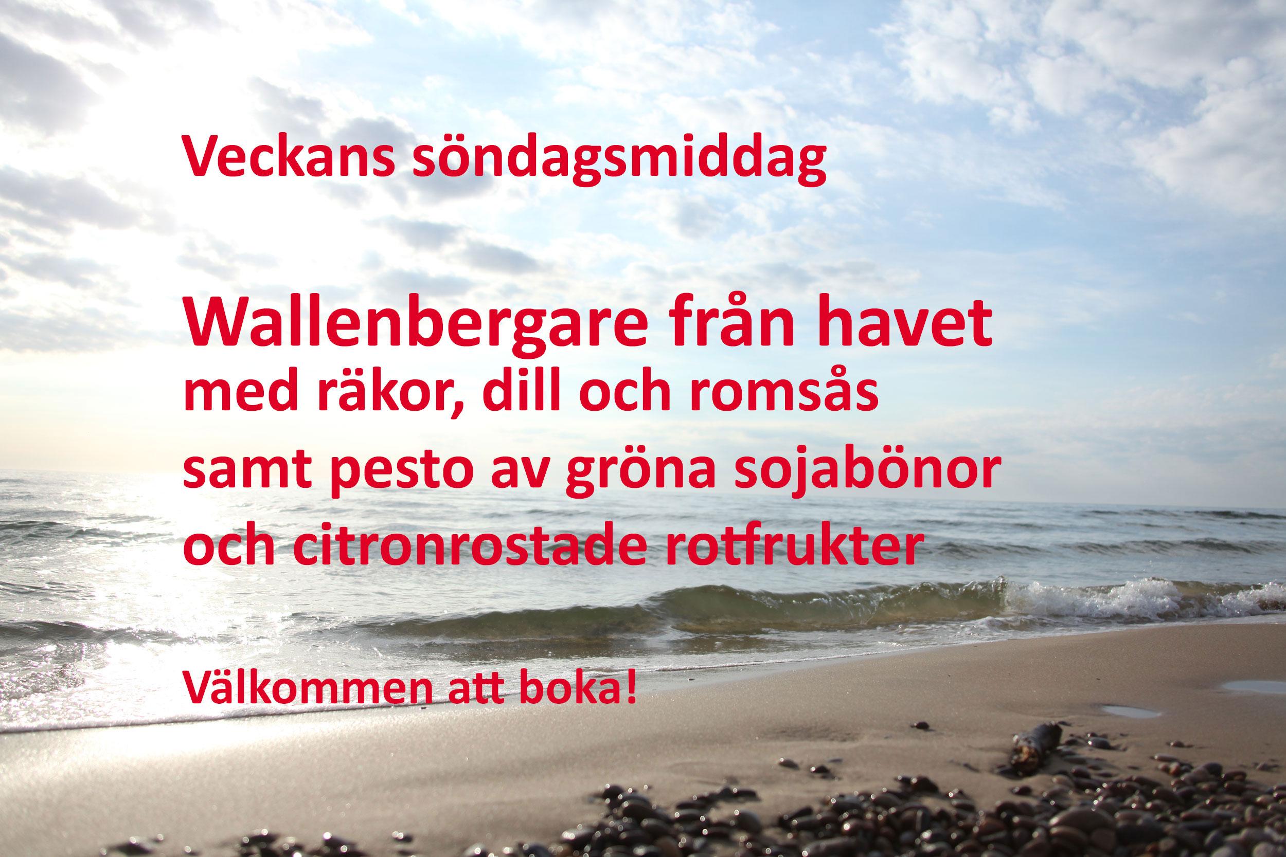 IMG 8662HAVET 1m Wallenbeg